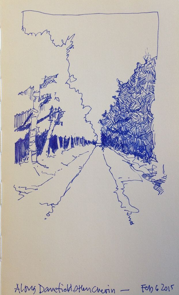 Really fast sketch of a woody path in Danefield Woods, Otley Chevin…. Blue pen…