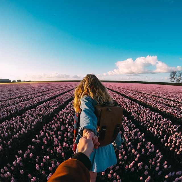 """""""The begin of the tulip season is finally here again – Holland is at it&#39…"""
