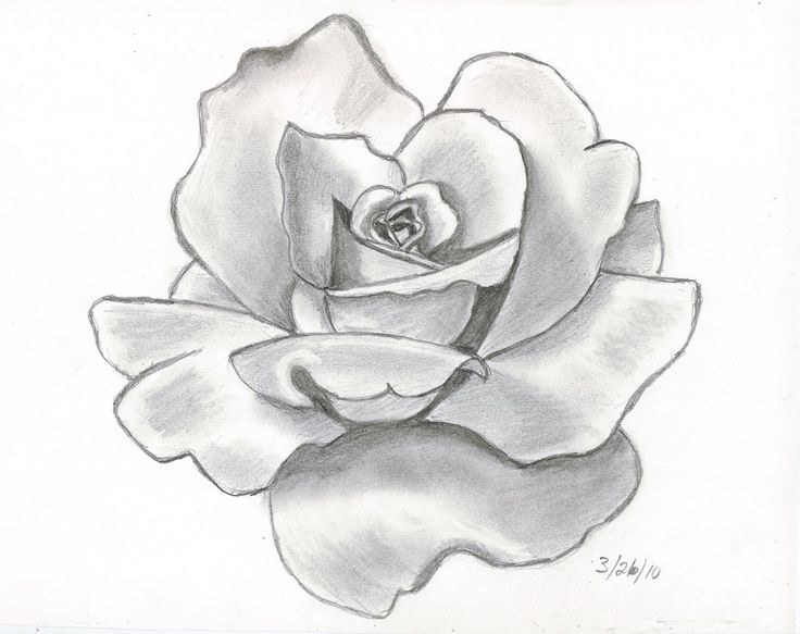 pencil drawings | This is my first attempt at doing a shaded pencil drawing of a…