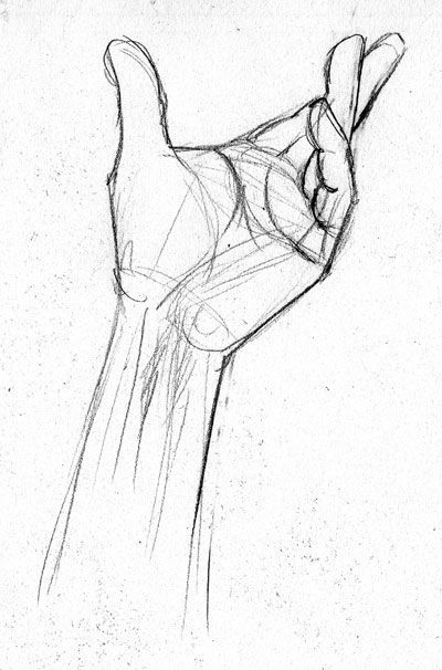 Grade 7-Don't forget to add a drawing of your hands. You may draw from a pho…