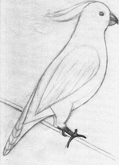 Sketches Of Animals on Pinterest | Sketches Of People, Animal …