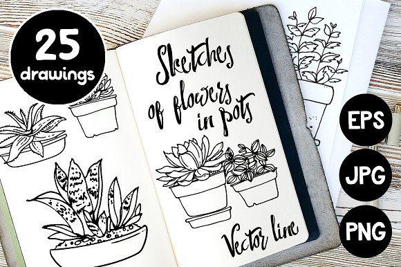 Vector sketches of flowers in pots by irina.vaneeva on Creative Market