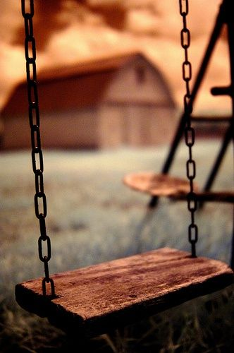 Who doesn't like a swing.. I kinda like the wood swing with a chain. rope or…