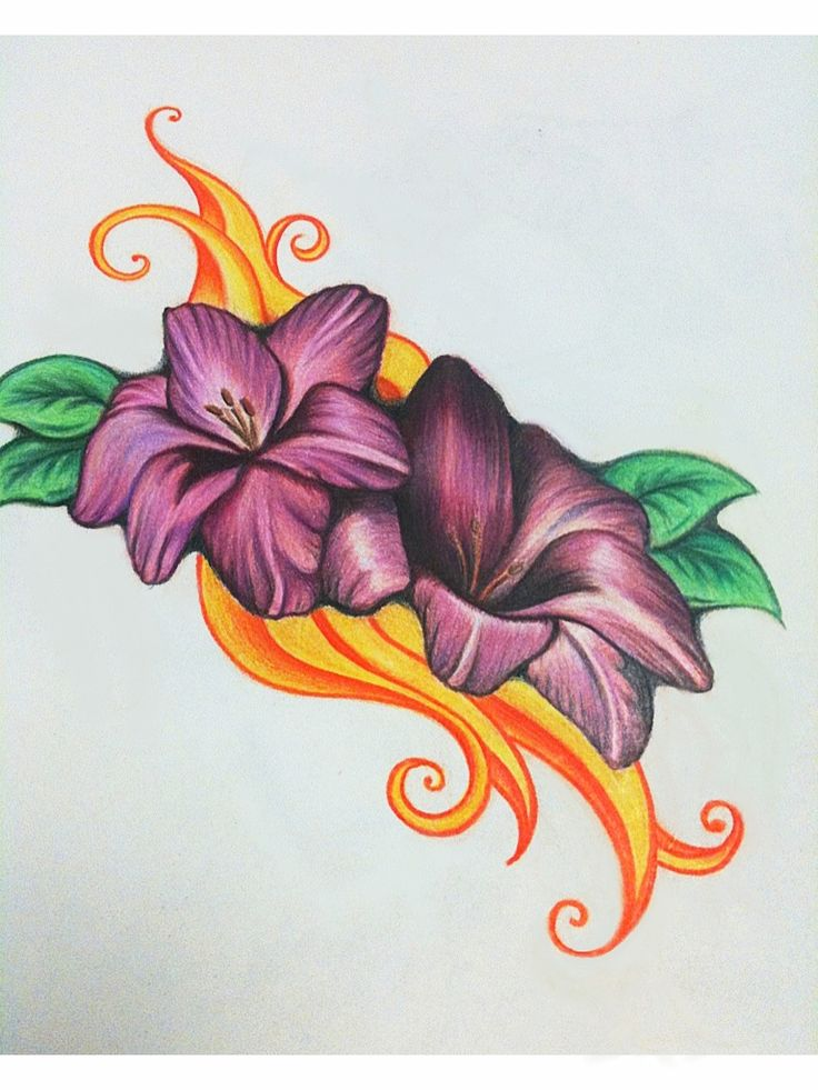 easy colored pencil drawings of flowers – all the Gallery you need!