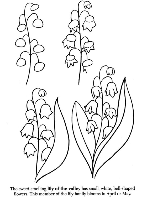 How to draw flowers.