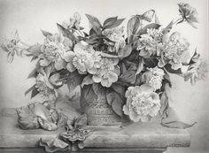 Pencil Sketches of Flowers | Pencil Drawings of Flowers