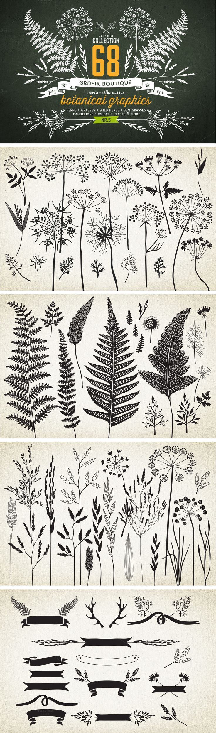 Botanical element illustrations… *IDEA* try printing to give a sense of surrou…