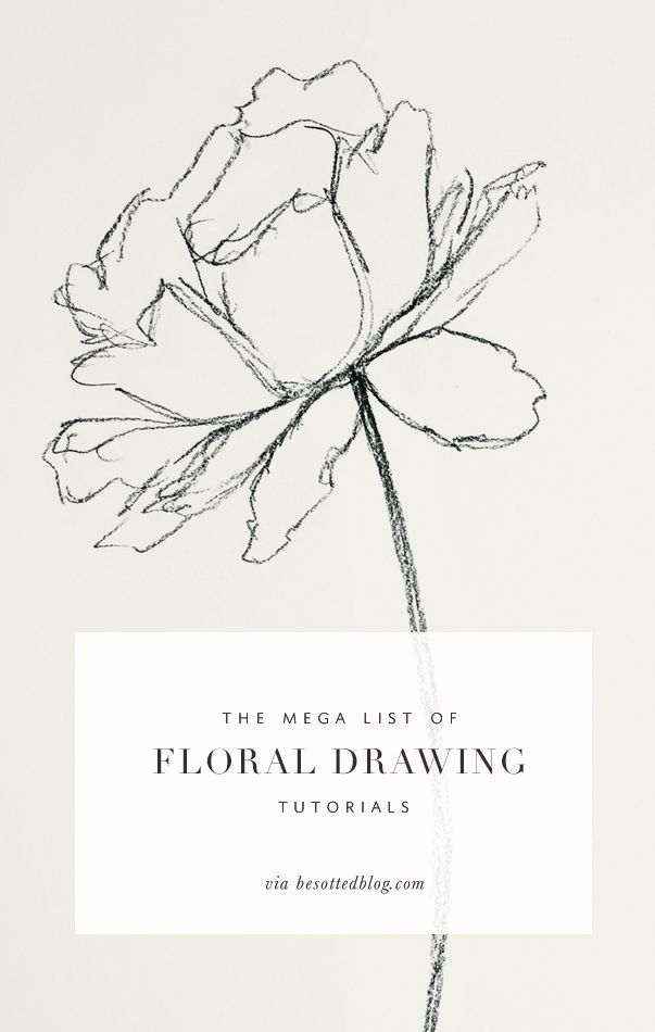 A mega list of floral drawing tutorials over 50+ resources for supplies, tutoria…
