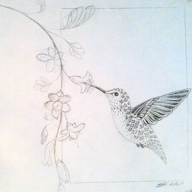 Stylized drawing of a hummingbird drinking from flowers. Pencil, sketch, art, na…