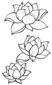 The lotus represents beauty coming out of darkness because a lotus' roots go…