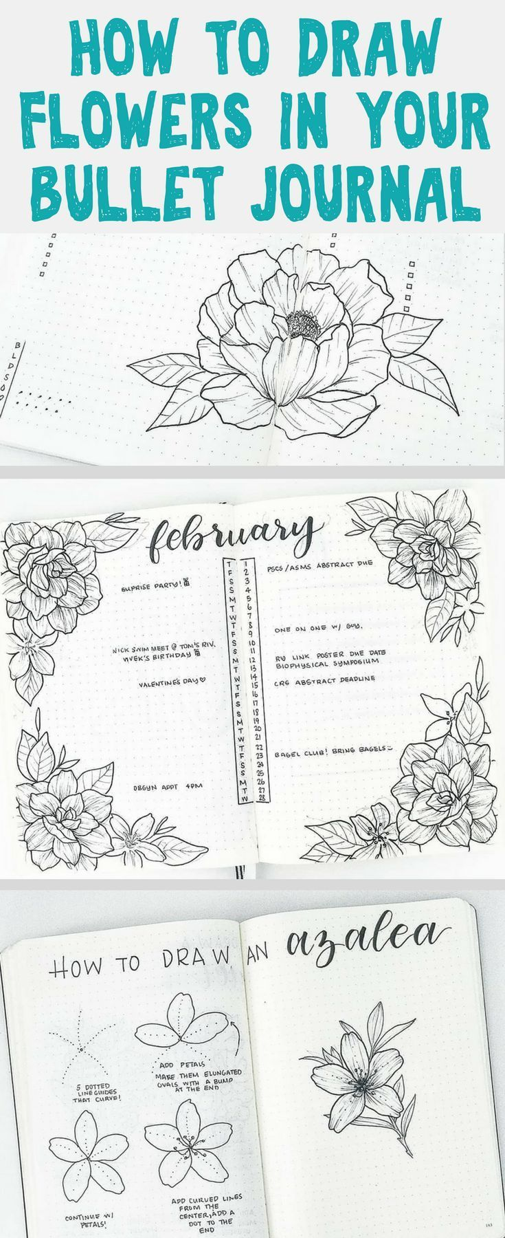 Bullet Journals – Beautiful, easy to draw flower doodles that beautiful ANY bull…