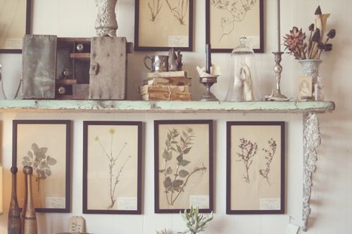 "Love.  Have the perfect wall to do this on. I may need to take some ""botanical"" …"