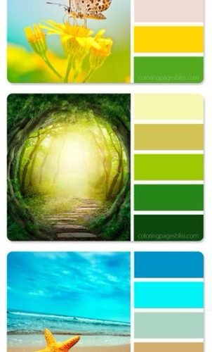 Nature inspired color palettes to provide you with artistic color combinations t…