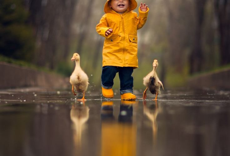 The Great Race; Jake Olson Studios; small children and animals, even in the rain…