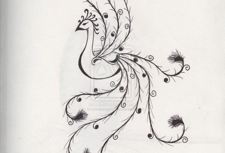 Easy Pencil Drawings Of Flowers And Vines | Art Design Gallery