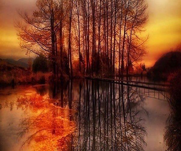 Autumn Selection Photography