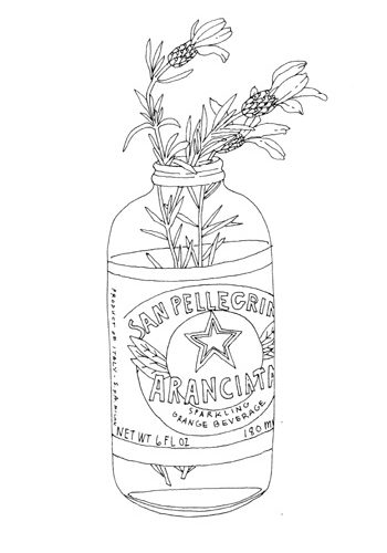 contour line drawing of flowers in a bottle. it is interesting to me because it …