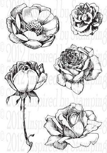 flower drawings