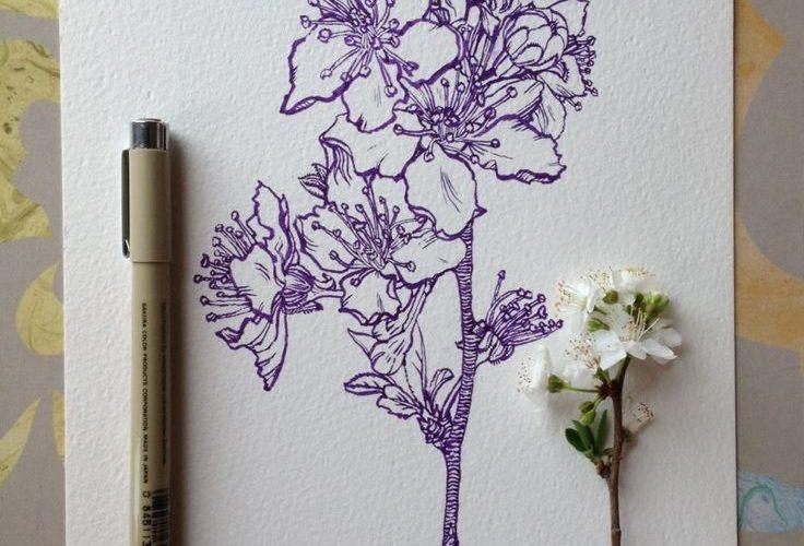 Flowers-in-Progress-A-beautiful-series-of-illustrations-by-Noel-Badges-Pugh-5-10…