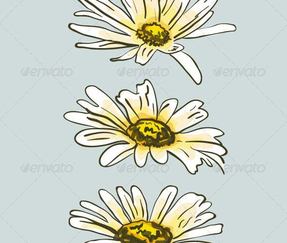 Set of Hand Drawn Camomile Flowers  #GraphicRiver         Hand drawn vector illu…