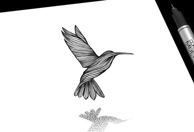Have you ever observed a hummingbird moving about in an aerial dance among the f…