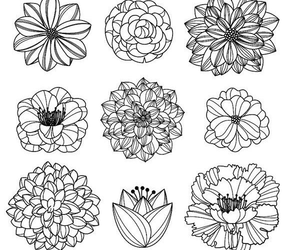 Flower Silhouettes 3 Clipart Clip Art, Flower Clip Art Clipart – Commercial and …