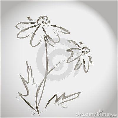 Ink sketch of flowers