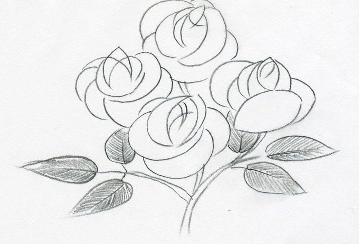 Easy Sketchbook Drawings | On the following sketch, the petals are made simply b…