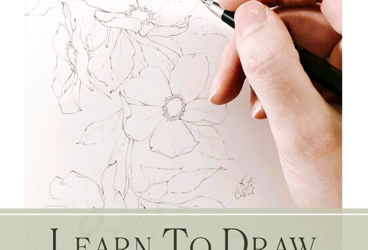 Learn How To Draw Realistic Flowers
