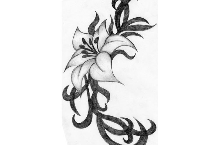 Hibiscus Flower Tattoos | Index of /wp-content/gallery/category-flower-tattoos