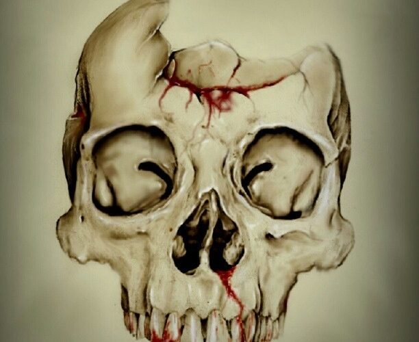 The image above is of a broken skull u plan to add an age of flowers emerging fr…
