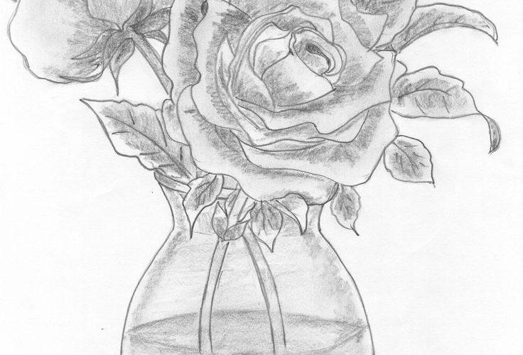 vase of roses  drawn in 2014 #pencil #sketch #roses #flowers #vase