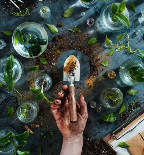 A gardening themed flat lay still life with plants in glass jars and a hand hold…