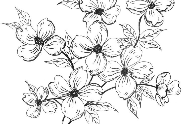 Digital Two for Tuesday: Flowers Everywhere