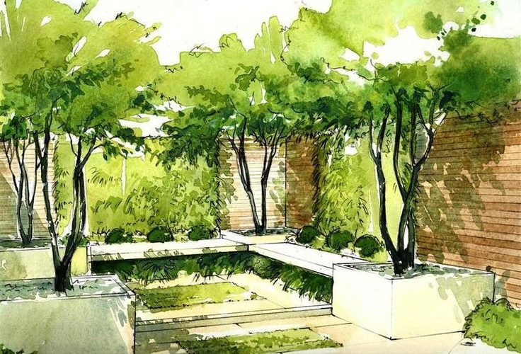 Helen Thomas trained as a landscape designer and specialises in hand rendered pe…