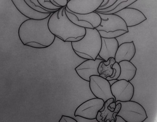 Lotus flower—– I like the shape of that flower too, but not the orchids with …