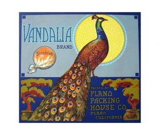 US Seller, unframed artwork for sale Vandalia Oranges crate label poster