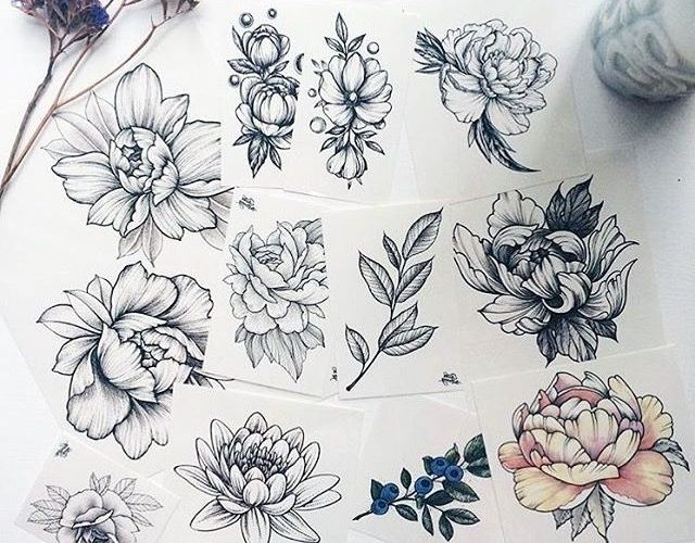 Gorgeous flower sketches! …for tattoos or journal drawing ideas? What do you s…
