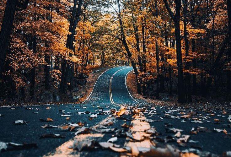 Follow Devon Beck landscape photography nature wanderlust adventure travel outdo…