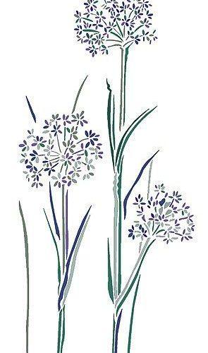 Wild Flower Stencils Cow Parsley Stencil
