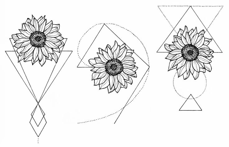 WTKE ON INSTAGRAM ( @sofia_finardi ) sketching   tattoo   sunflower   tattoos   …
