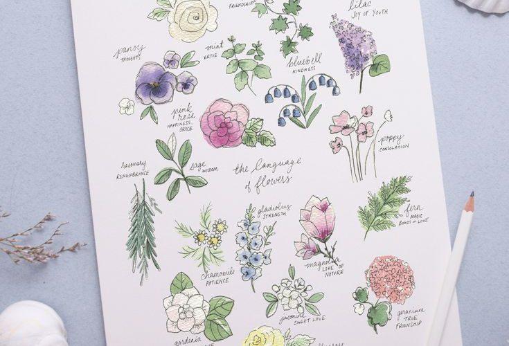 Language of Flowers Art Print | Shayda Campbell on Patreon
