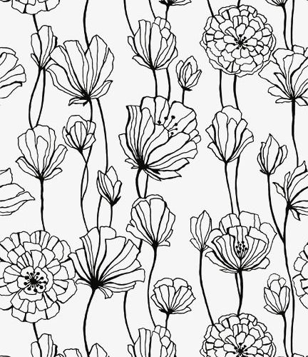 Minimalist black line drawing flowers PNG and PSD