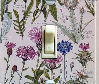 Thistles Vintage Illustration Decorative Single Switch Plate ***FREE Shipping***…