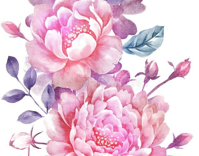 Flower sketches: Watercolor illustration flower in simple backgroun…