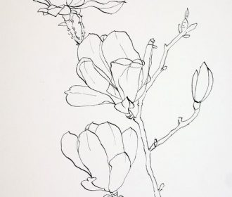 Pen Drawings of Flowers | Completed ink drawing of pink magnolia flowers prior t…
