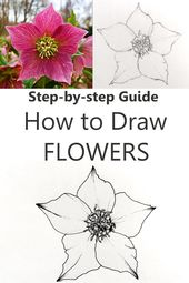Flower Drawing Tutorial for Beginners