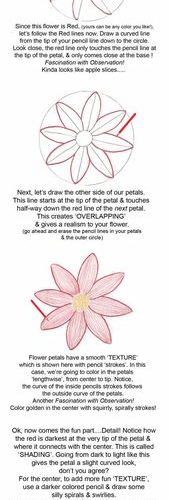 How to draw a cute daisy! Step by step, easy instructions. You could draw it as …