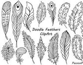 Hand Drawn Feathers Clipart Digital Feathers clip art