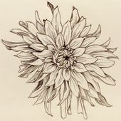 Things That Make You Love And Hate Flower Tattoo Sketches   flower tattoo sketch…